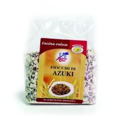 Bevanda di riso al cacao senza glutine 1l
