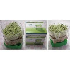 Polpa di Mela Doypack 100% frutta