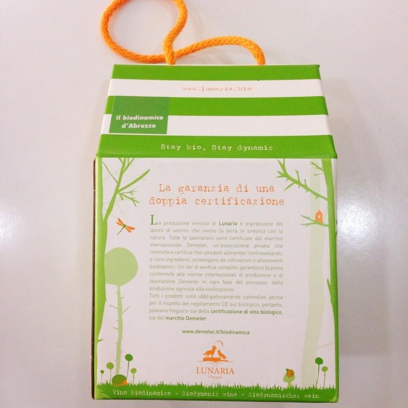 Cioccolato bio macha Tea