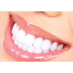 Shampoo Organic Rose