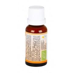 Mandonaise - Alternativa alla maionese