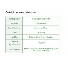 Tinta per capelli Castano ramato 4R