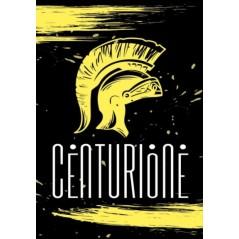 Tinta per capelli Biondo sabbia FF5