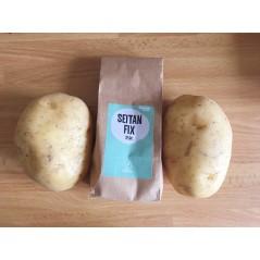 T-shirt Uomo [VEGAN] - M verde