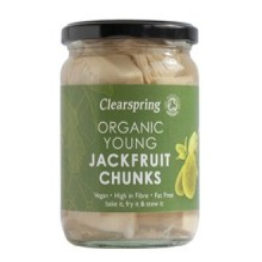 Jackfruit Bio in vetro