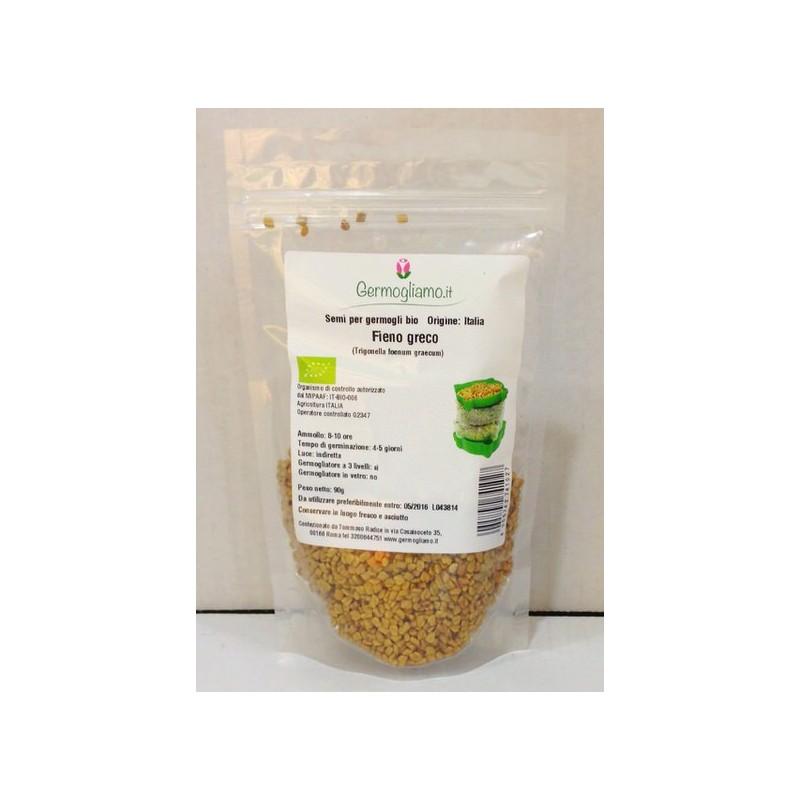Ferro plus con acerola (vitamina C)