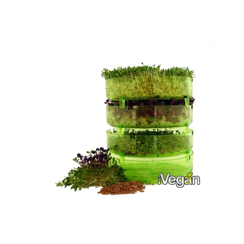 Salsicce affumicate Winzi-Weenies